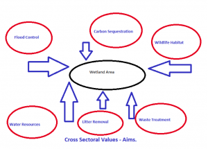 cross-sectoral-values-aims